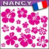 20 STICKERS HIBISCUS planche A4